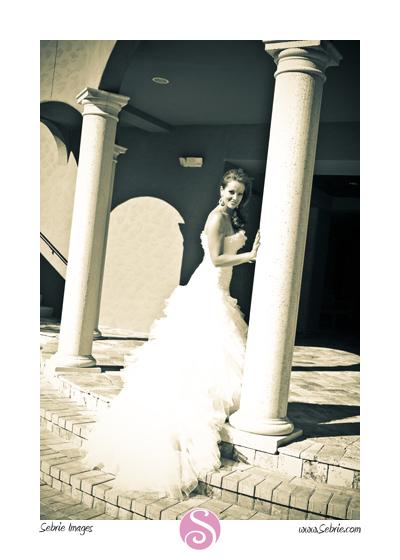 Paseo Wedding Portraits