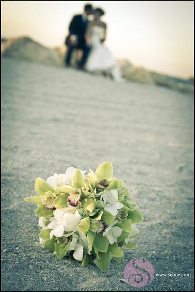 captiva wedding photographers