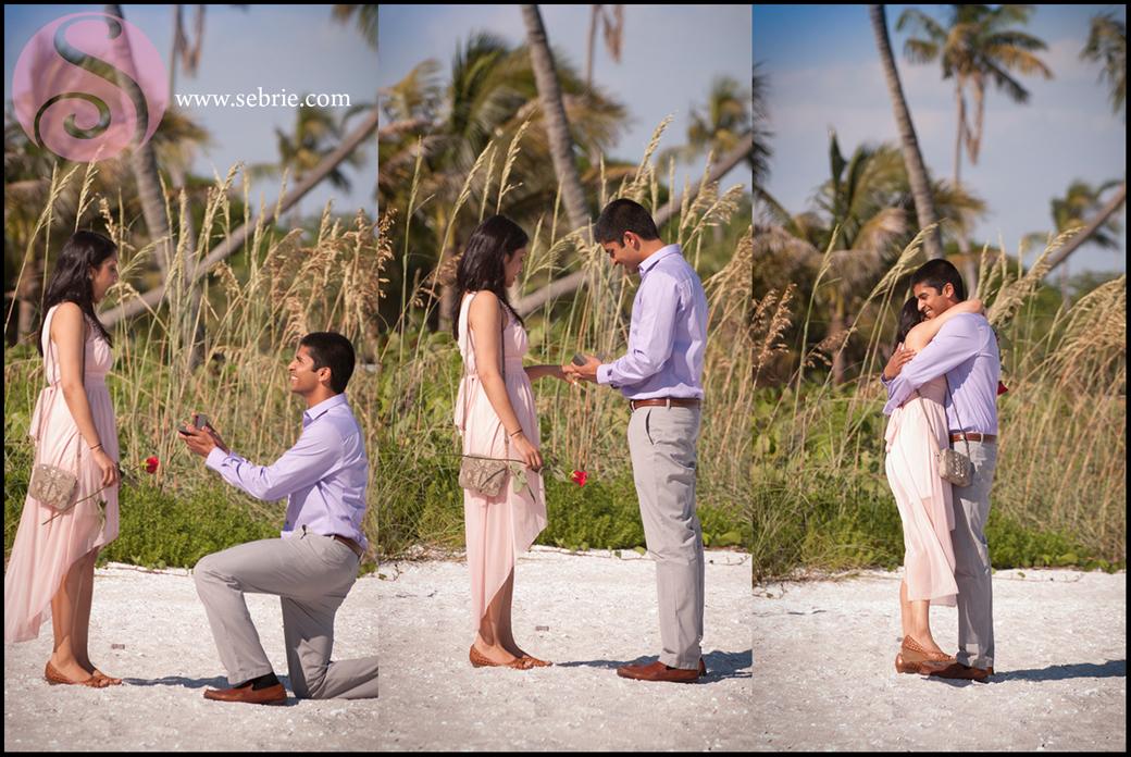 Beach Proposal Captured